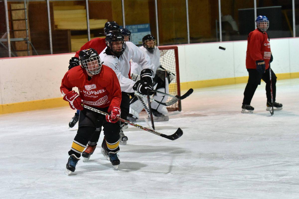 Eishockey im Eisstadion